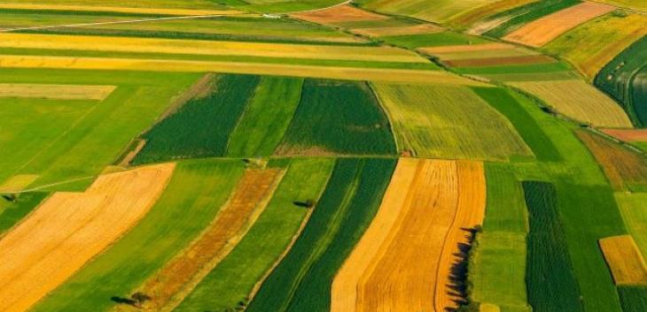 Najskuplje cene zakupa poljoprivrednog zemljšta