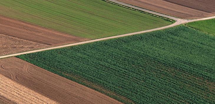 Najveći zemljoposednici u Srbiji – promene na vrhu