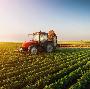 Raspisano 11 konkursa u oblasti poljoprivrede